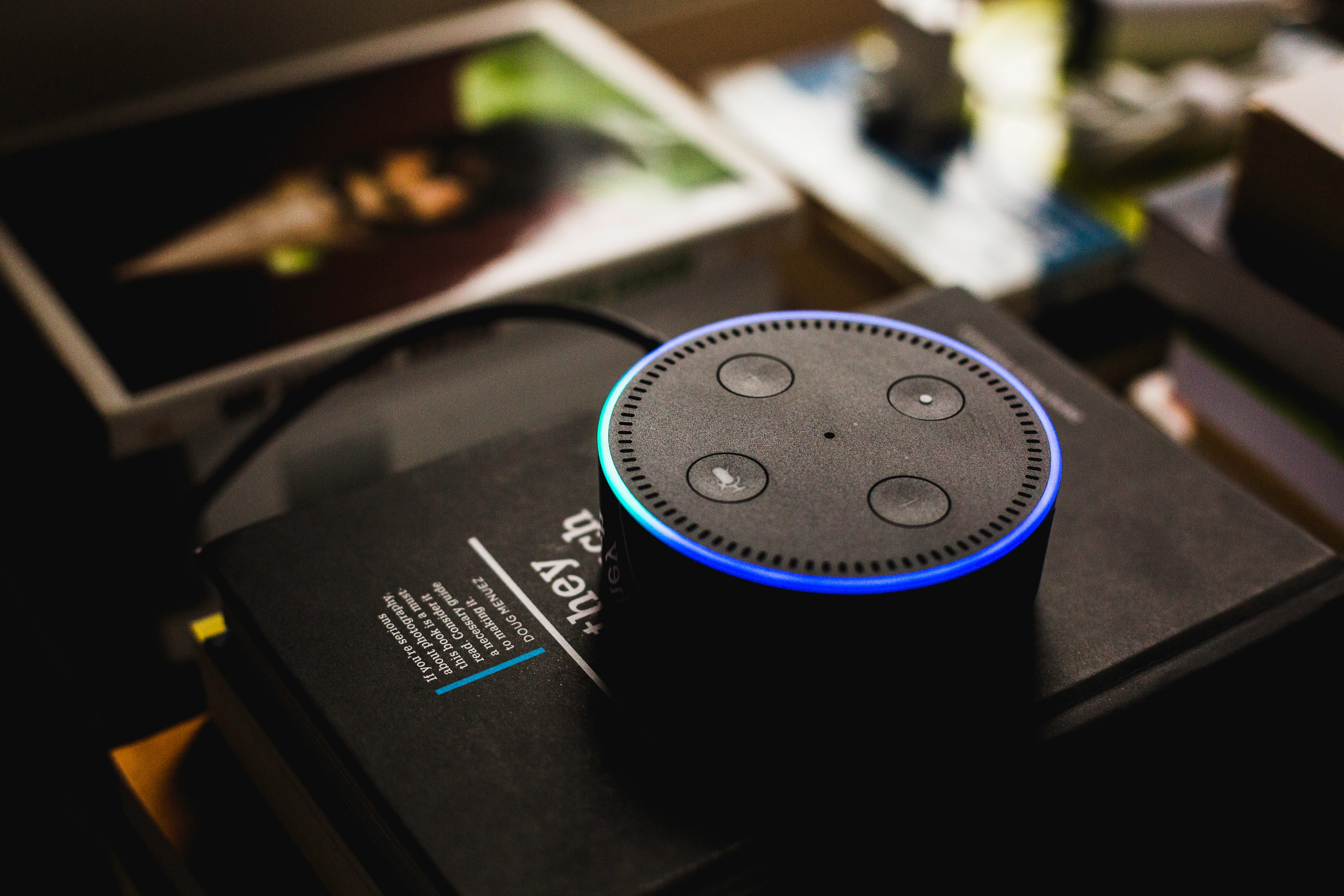 Voice Recognition Banking